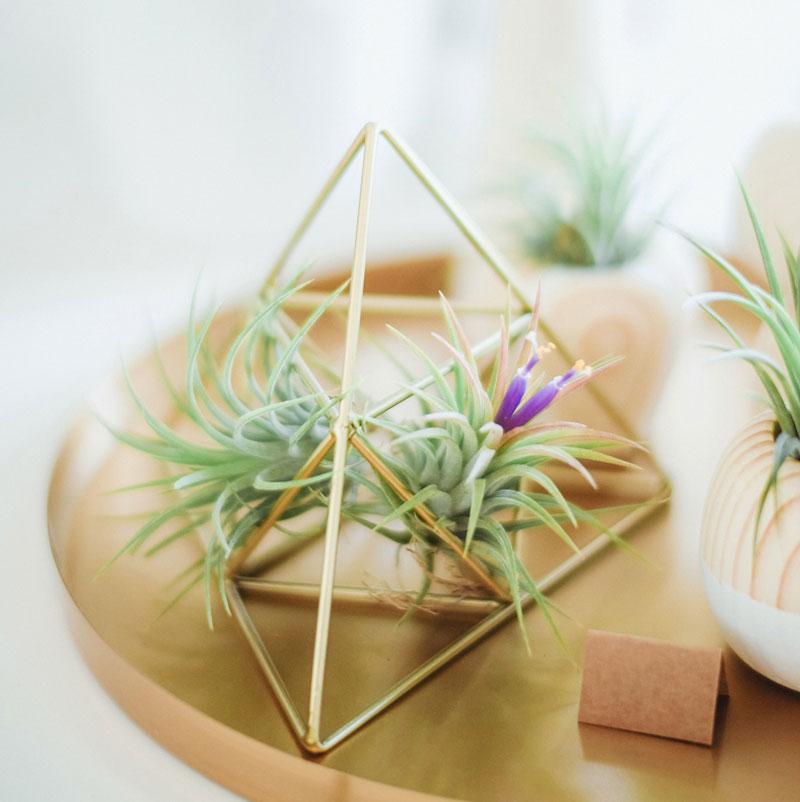 creazione sito web fiorai composizione piramide Italy wm