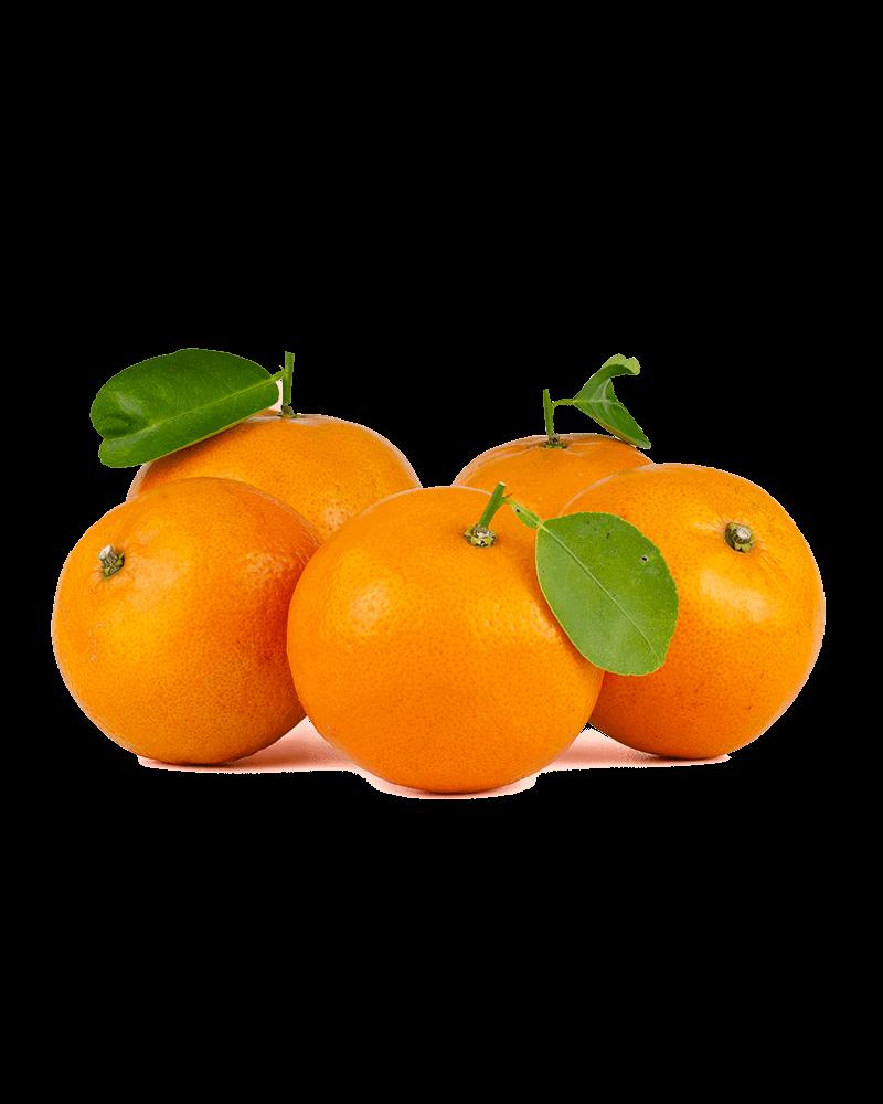 Orange prodotti bio